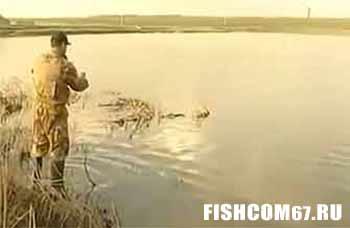 Ловля карася на поплавочную удочку видео