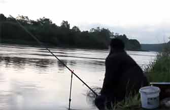 Ловля леща на фидер видео