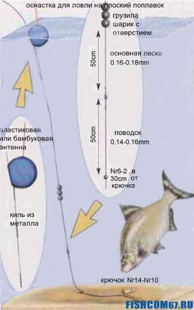 Поплавочная оснастка для ловли на плоский поплавок