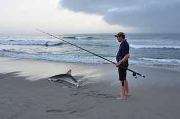 Рыбалка на акулу