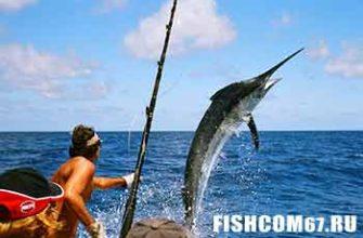 Вот такая рыбалка на Мальдивах