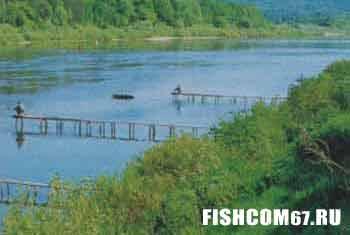 Рыбалка на реке у плетней с мостками