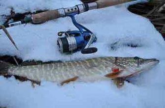 Как рыбачить на спиннинг
