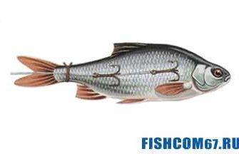 Оснастка с мертвой рыбкой на щуку