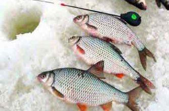 Зимняя рыбалка в Ивановской области