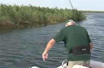 Рыбалка в дельте Волги видео