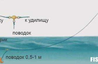 Поплавочная снасть с поплавком-шариком для ловли карася