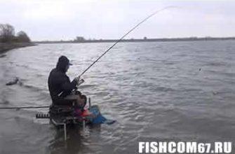 Матчевая ловля на реке