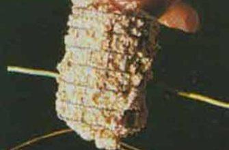Нахлыстовая мушка на подлеске с коннектором