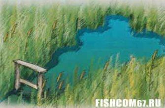 Скамеечка для рыболова в прогале