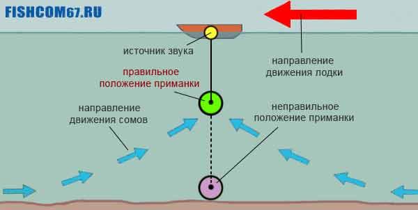 Схема положения приманки при ловле сома на квок