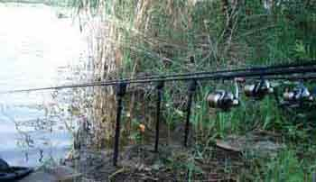 Снасти для ловли сазана