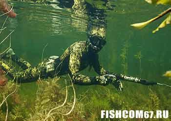 Подводный охотник в поиске добычи
