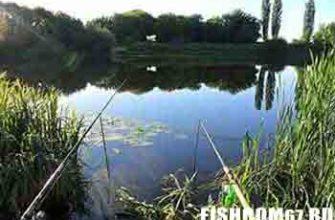 Рыбалка летом на озере
