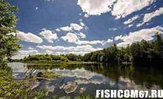 Рыбалка в июле на пруду
