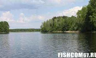 Рыбалка в июне на водоеме