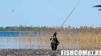 Рыбалка в мае на пруду
