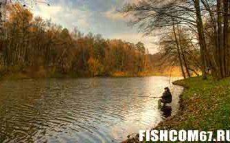 Рыбалка в Октябре на лесной речке