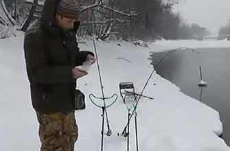 Зимний фидер видео