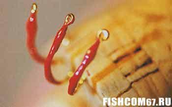 Советы бывалых рыбаков 92