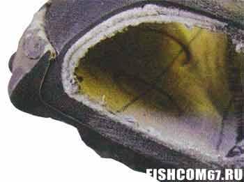 Прошлифованный носок ботинка