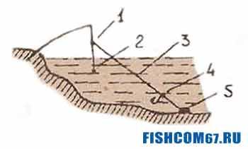 Советы бывалых рыбаков 97